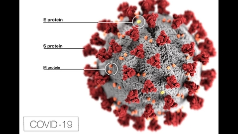 Thumbnail for entry COVID-19: Yale Physicians Discuss the Coronavirus