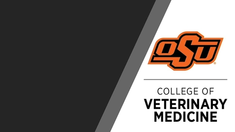 Thumbnail for entry OSU College of Veterinary Medicine Induction Ceremony for the Class of 2025