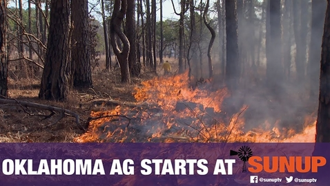 Thumbnail for entry Teaching Extension Specialists the Benefits of Prescribed Burning