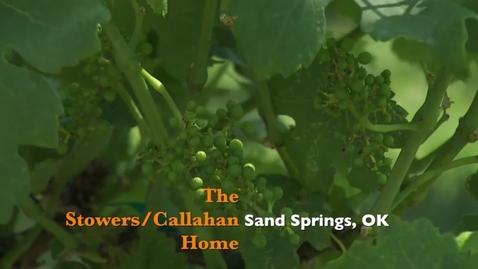 Thumbnail for entry Oklahoma Gardening: Home Vineyard & Garden Visit