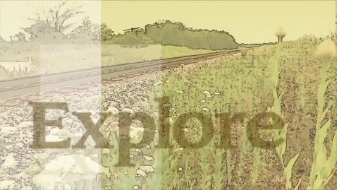 Thumbnail for entry EXPLORE ADA:  Leon Polk Smith- Both Sides Of The Line