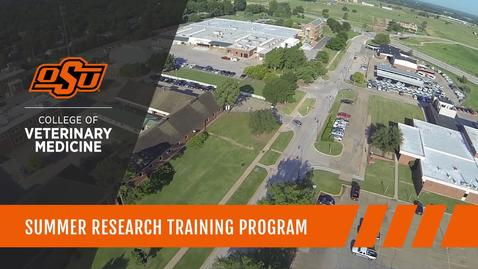 Thumbnail for entry Summer Research Training Program: Expanding the Knowledge Base