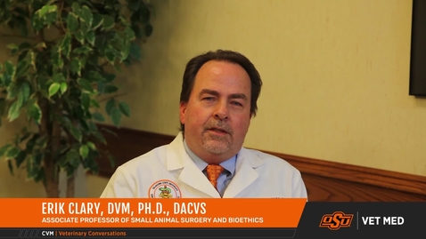 Thumbnail for entry Vet Med Faces of Research: Dr. Erik Clary