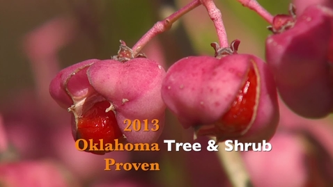 Thumbnail for entry 2013 Oklahoma Proven Tree & Shrub