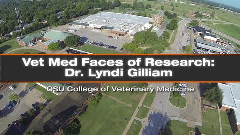 Thumbnail for entry Vet Med Faces of Research: Dr. Lyndi Gilliam