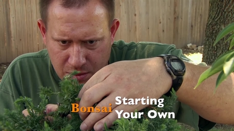 Thumbnail for entry Oklahoma Gardening: Starting Your Own Bonsai