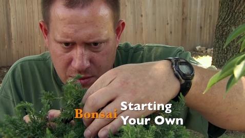 Thumbnail for entry Oklahoma Gardening: Starting Your Own Bonsai