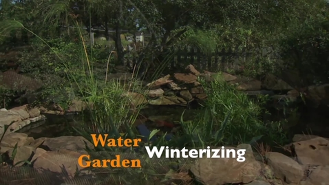Thumbnail for entry OKG: Water Garden Winterizing