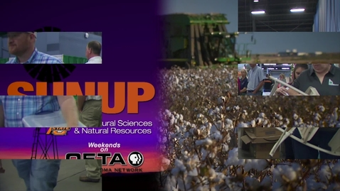 Thumbnail for entry SUNUP: Think you could judge at the Great State Fair of Oklahoma?