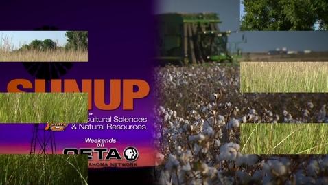 Thumbnail for entry SUNUP: How many cattle can graze?- GrazeOK App