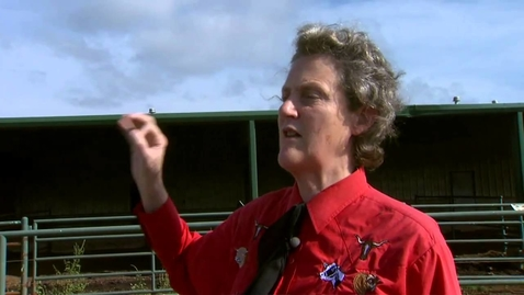 Thumbnail for entry Animal Behavior with Temple Grandin - Part 3