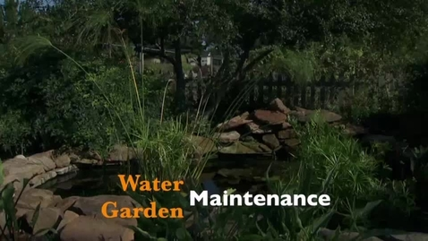 Thumbnail for entry Oklahoma Gardening: Water Garden Maintenance