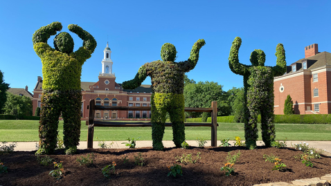 Thumbnail for entry New OSU Topiary Installed