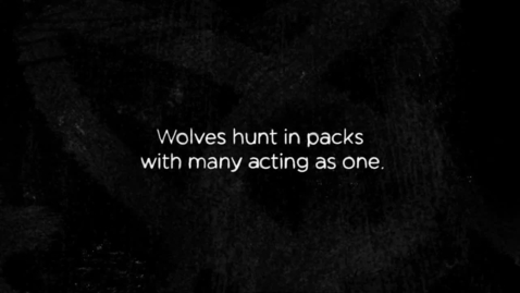 """Thumbnail for entry OSU Student Earns Adobe Honors For Animation """"How Wolves Hunt"""""""