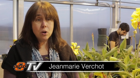 Thumbnail for entry Faculty Experts: Dr. Jeanmarie Verchot