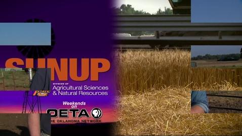 Thumbnail for entry SUNUP: Livestock Marketing (9/23/17)