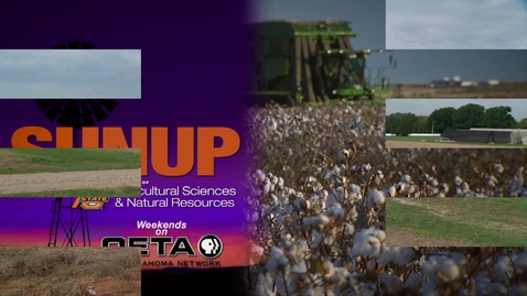 Thumbnail for entry SUNUP: Soil fertility should be at the top of your checklist