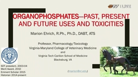Thumbnail for entry REBROADCAST:  Interdisciplinary Toxicology Symposium Presents Dr. Marion Ehrich