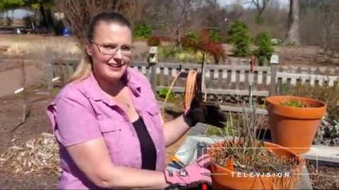 Thumbnail for entry Oklahoma Gardening Episode #4639 (03/28/20)