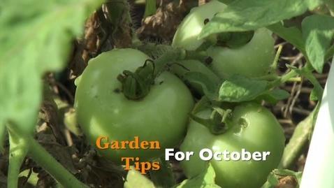 Thumbnail for entry Garden Tips for October