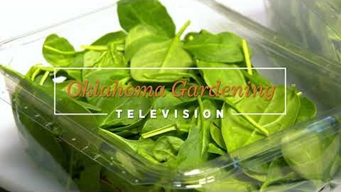 Thumbnail for entry Properly Washing Your Leafy Greens