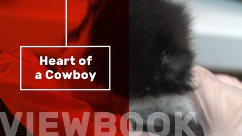 Thumbnail for entry Heart of a Cowboy
