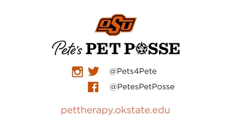 Thumbnail for entry Pete's Pet Posse Offers Advice for Finals Week