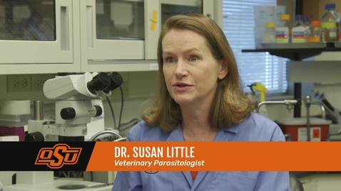Thumbnail for entry Vet Med Faces of Research: Dr. Susan Little