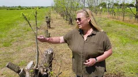 Thumbnail for entry Oklahoma Gardening Episode #4744 (05/01/21)