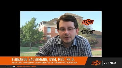 Thumbnail for entry Vet Med Faces of Research: Dr. Fernando Bauermann