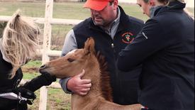 Thumbnail for entry Oklahoma CVHS Ranch Bringing Miracles to Life