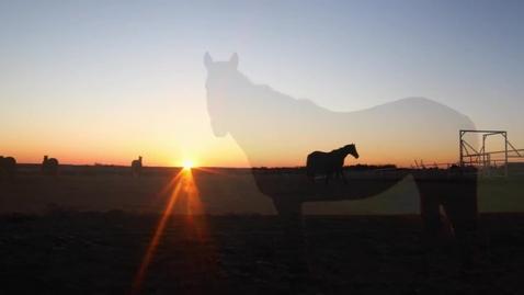 Thumbnail for entry Oklahoma CVM Ranch Bringing Miracles to Life