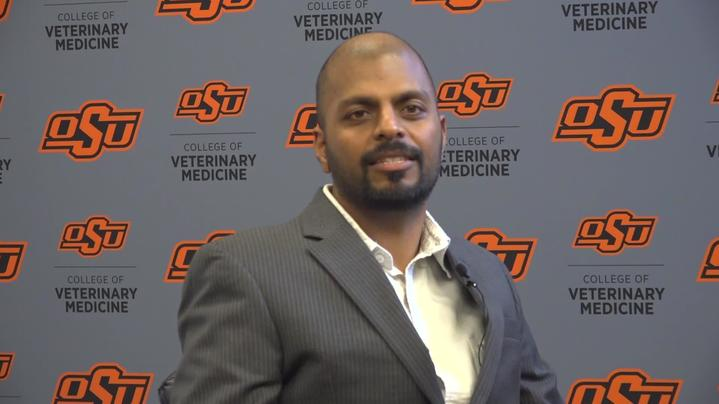 Thumbnail for channel OSU College of Veterinary Medicine