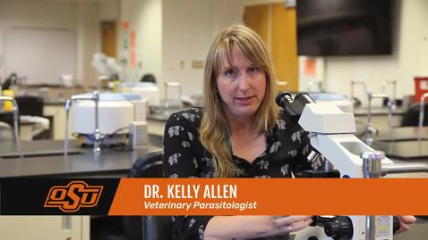Thumbnail for entry Vet Med Faces of Research: Dr. Kelly Allen