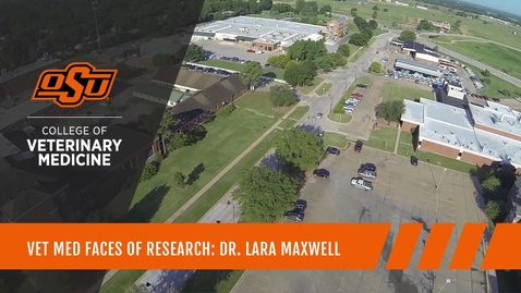 Thumbnail for entry Vet Med Faces of Research: Dr. Lara Maxwell