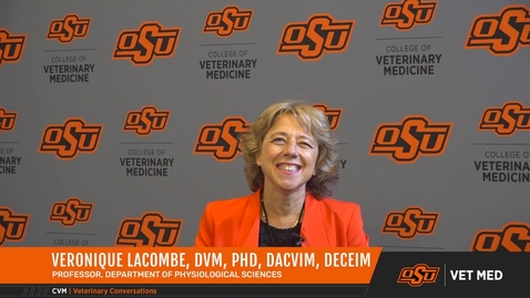 Thumbnail for entry Vet Med Faces of Research: Dr. Veronique Lacombe