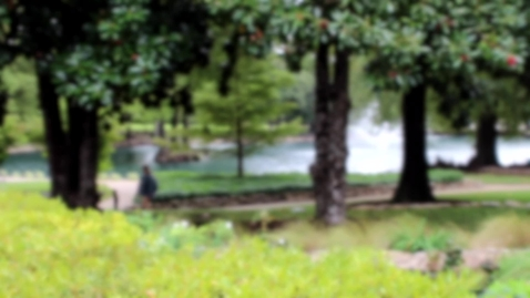 Thumbnail for entry Sights and Sounds of Theta Pond