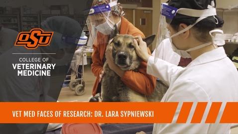 Thumbnail for entry Vet Med Faces of Research: Dr. Lara Sypniewski