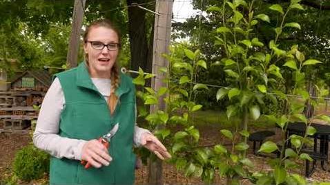 Thumbnail for entry Oklahoma Gardening Episode #4748 (05/29/21)