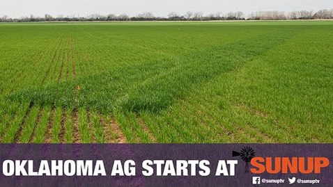 Thumbnail for entry Growing Bermudagrass For Forage (4/18/20)