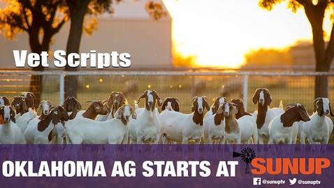 Thumbnail for entry Vet Scripts (12/19/20)