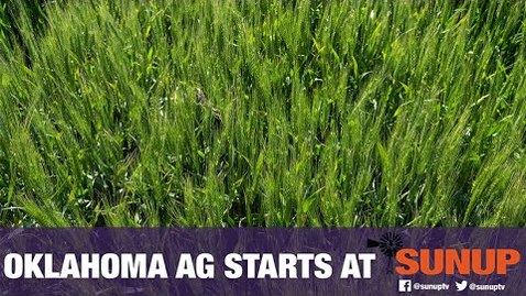 Thumbnail for entry Altus Virtual Wheat Field Day (4/24/20)