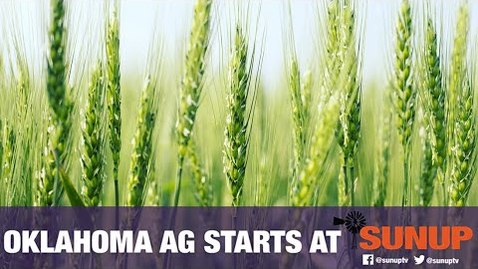 Thumbnail for entry Chickasha Virtual Wheat Field Day  (4/24/20)