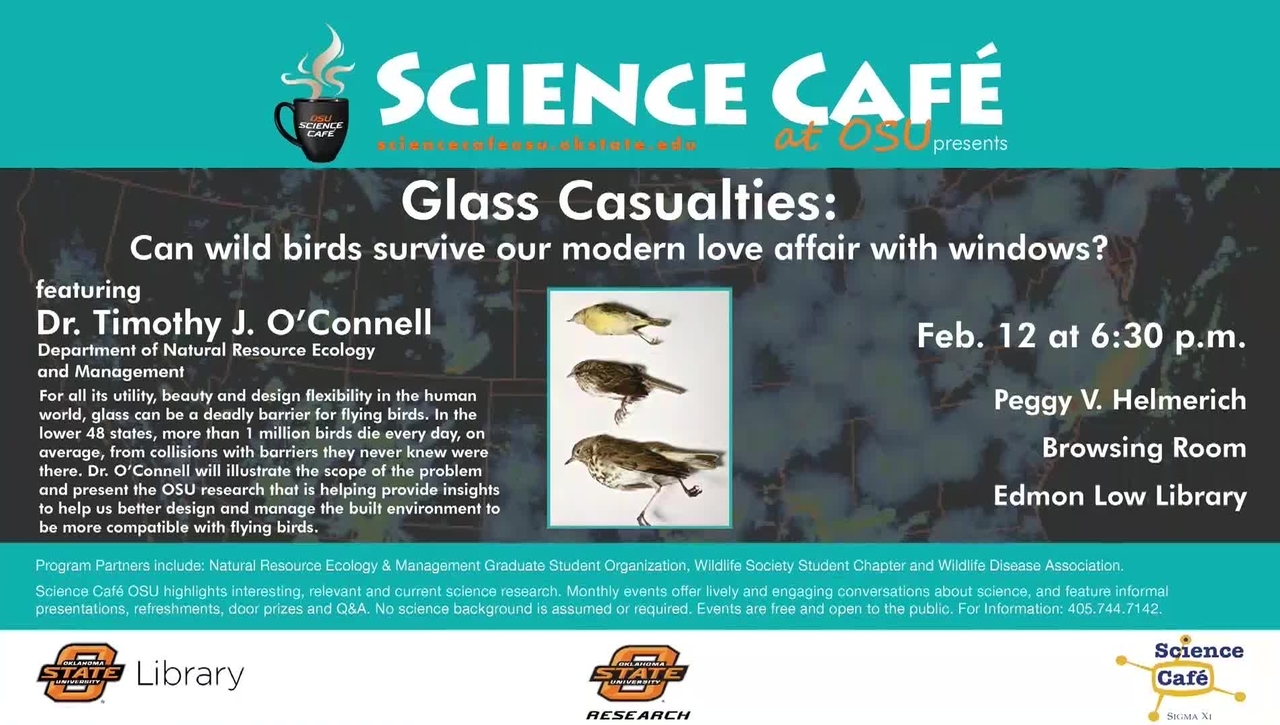 Science Cafe: Glass Casualties