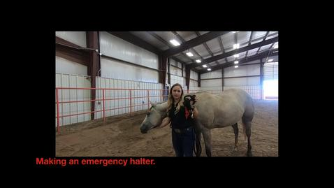 Thumbnail for entry Making an Emergency Halter