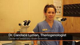 Thumbnail for entry Dr. Candace Lyman: First Generation College Graduate