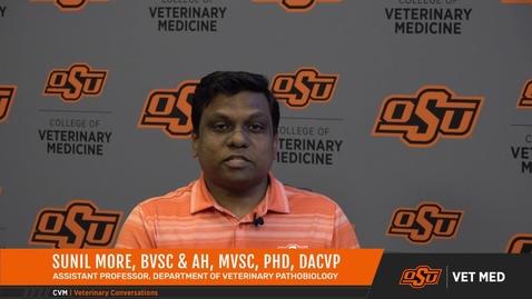 Thumbnail for entry Vet Med Faces of Research: Dr. Sunil More