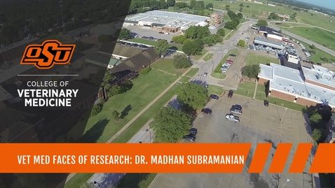 Thumbnail for entry Vet Med Faces of Research: Dr. Madhan Subramanian