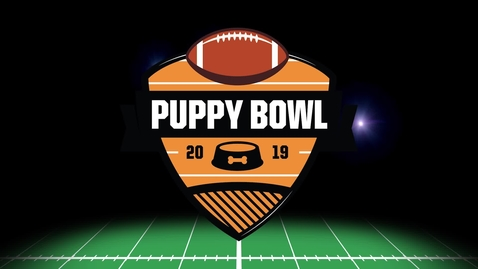 Thumbnail for entry The Puppy Bowl 2019