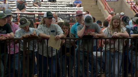 Thumbnail for entry Cultivating Leadership Through Livestock Judging